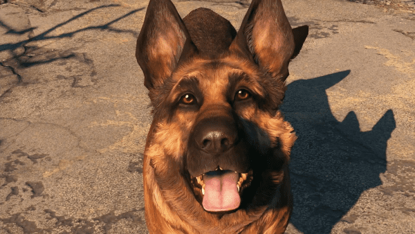 Fallout 4 VR, best, top, dogs, video games