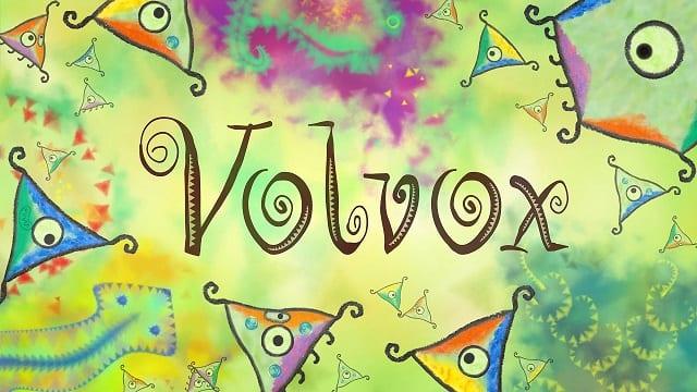 volvox header