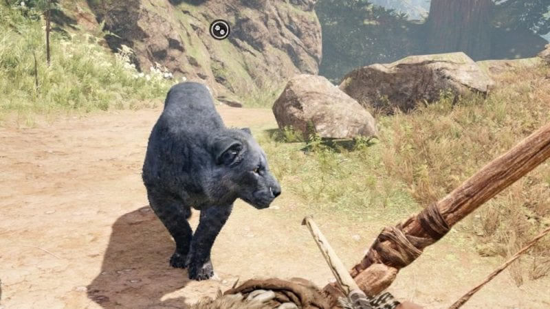 far cry primal rare black lion skin