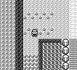 pokemon red where to stand