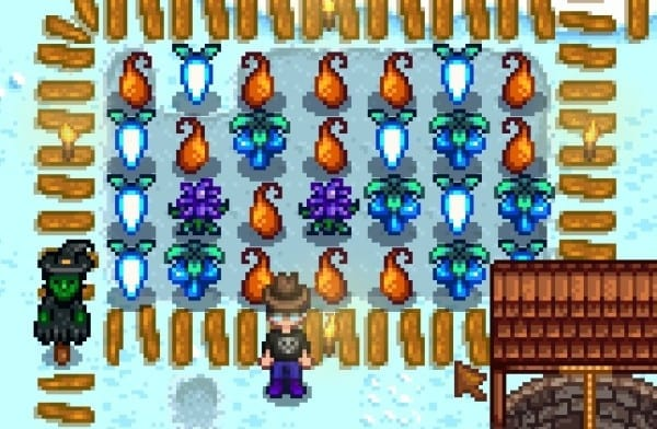 stardew valley what to do in the winter. Black Bedroom Furniture Sets. Home Design Ideas