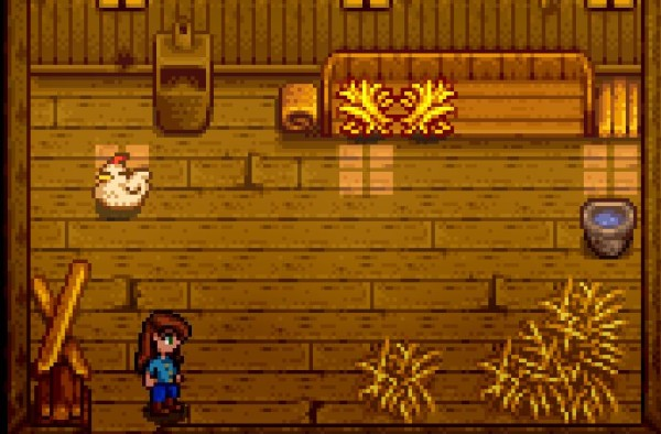 Stardew Valley  How to Feed Chickens 00aacf722
