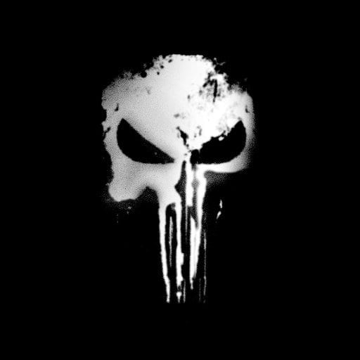 The Punisher netflix show series marvel