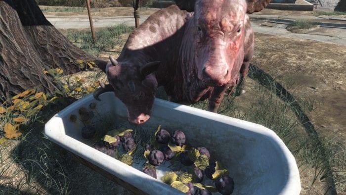 Fallout 4 brahmin