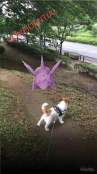 Pokemon GO, Nidorino