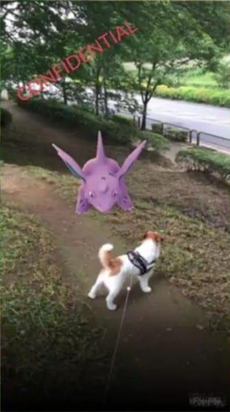 pokemon go field test 2