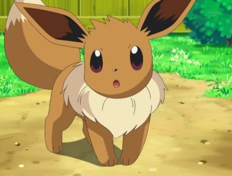 Eevee, pokemon go, how to, where to, catch, capture, guide