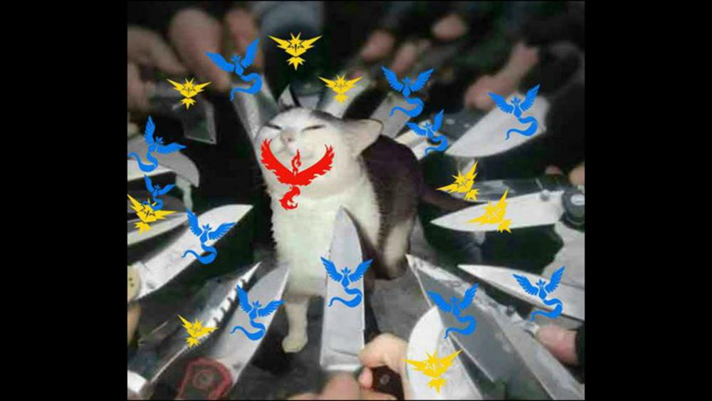 pokemon go valor vs mystic vs instinct memes to fuel your
