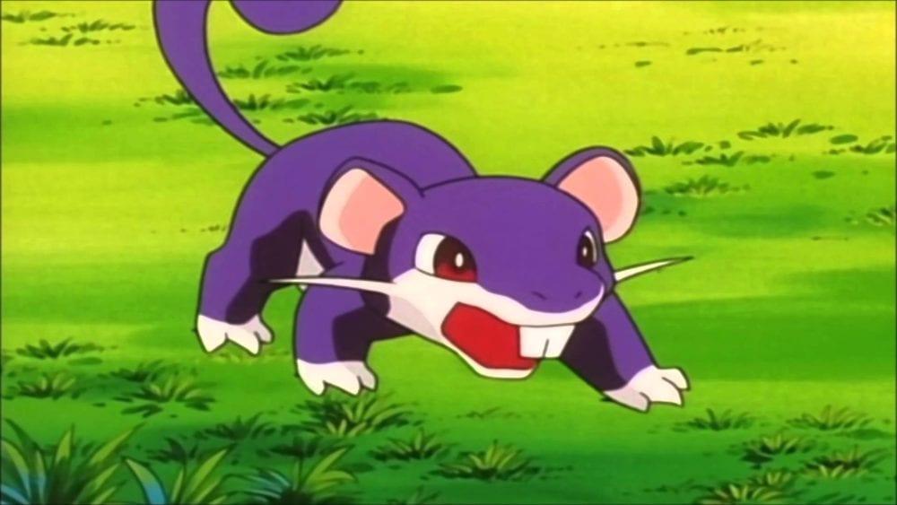 rattata pokemon go