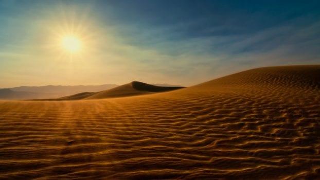 Sahara Desert - Moltres