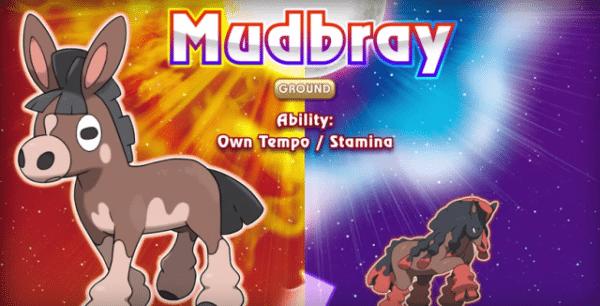 mudbray-pokemon-sun-moon