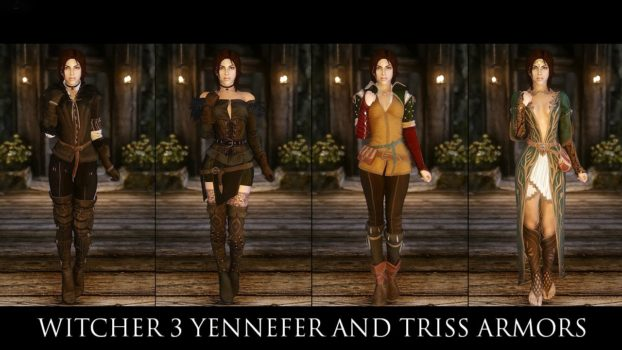 Triss and Yennefer Armor Mod