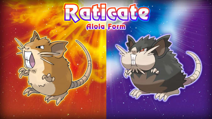 alolan raticate, pokemon, sun and moon
