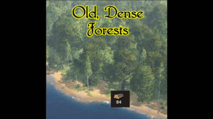 life is feudal dense forests