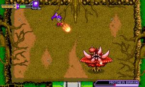 Shantae x rikys - 5 1