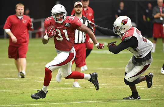 David Johnson, Cardinals, HB - 94