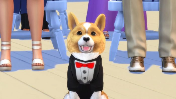 Sims  Cats And Dogs Expansion Pack Features