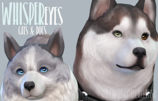 Sims  Cats And Dogs Not Playable