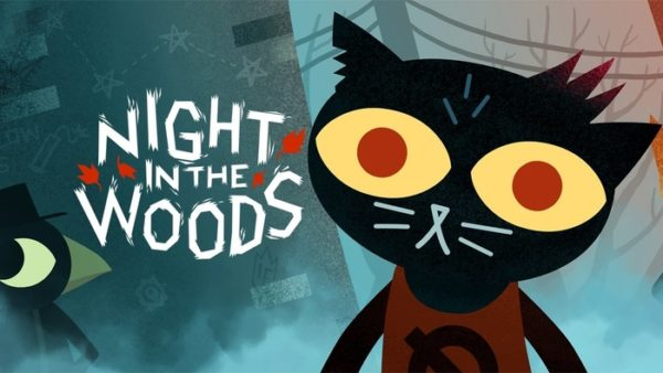 night in the woods, switch
