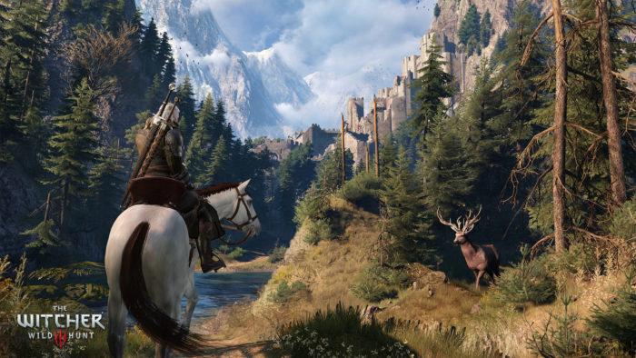 The Witcher 3 Horse