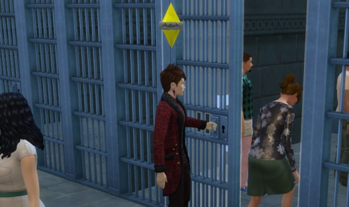 sims jail
