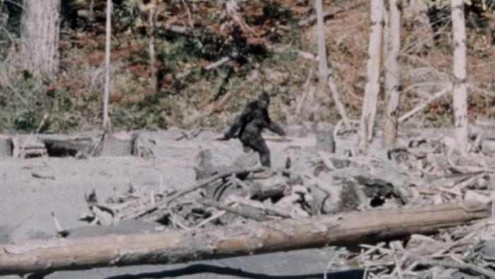 Bigfoot, Sasquatch, legend