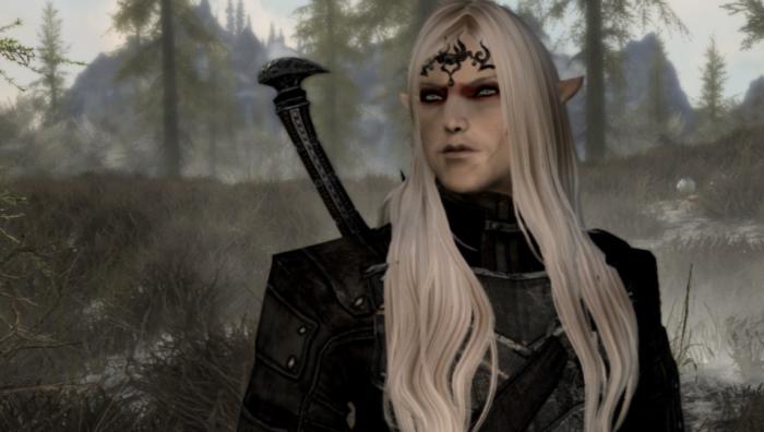 skyrim mods elf