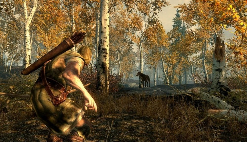 Skyrim Adopt More Than 2 Mod Xbox One