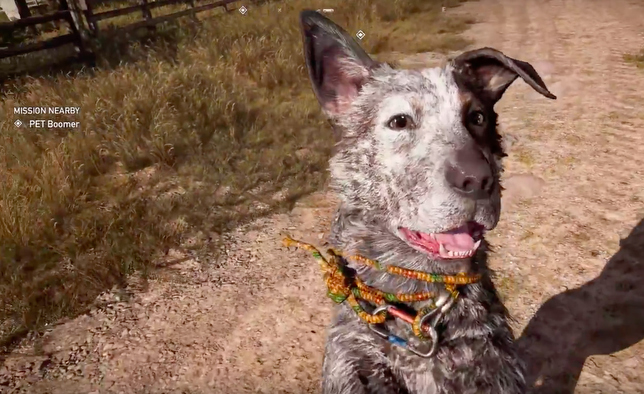 Far Cry 5, Pet the Dog