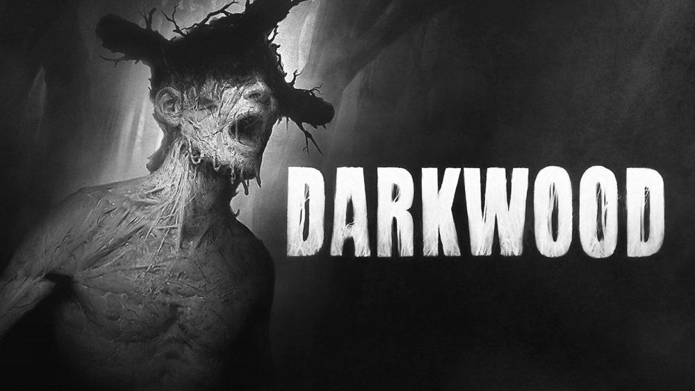 darkwood review