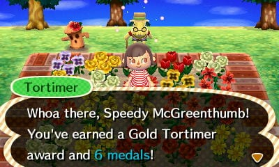 Animal Crossing New Leaf Tours, features missing from New Horizons