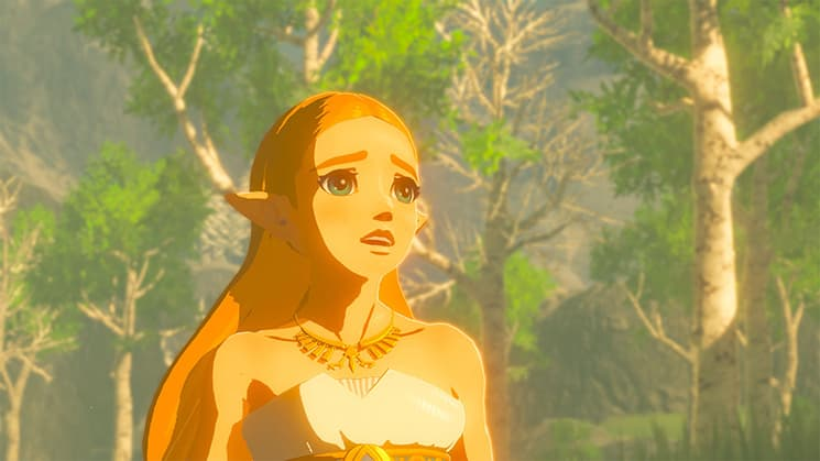 breath of the wild, cyber sale, eshop, nintendo, black friday, first-party