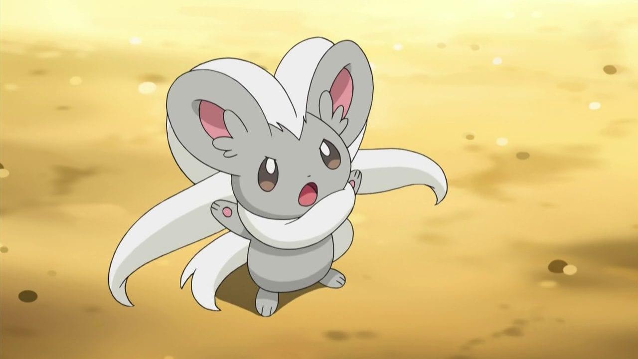 Pokemon Sword and Shield, How to Evolve Minccino Into Cinccino