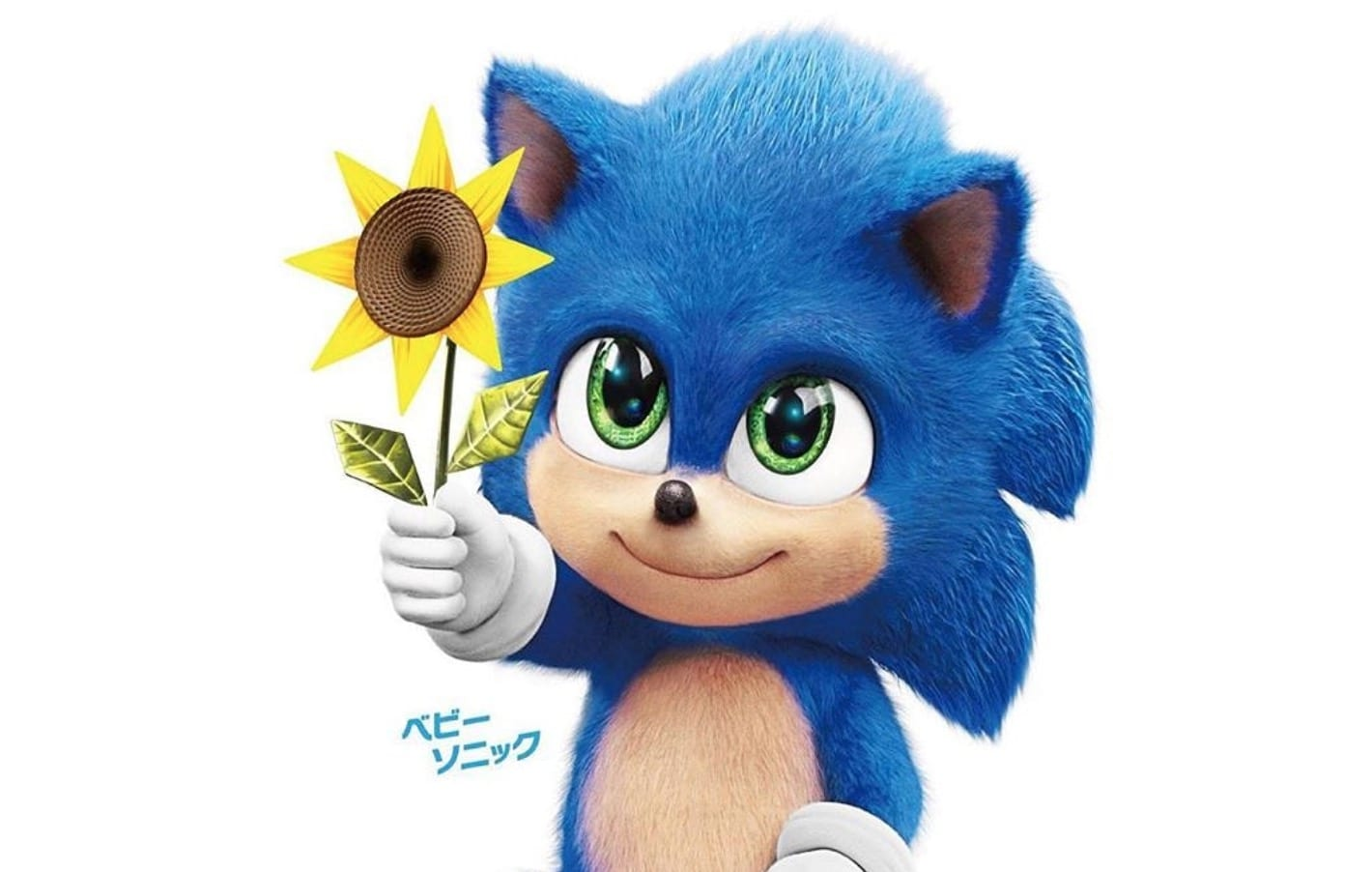 baby sonic the hedgehog