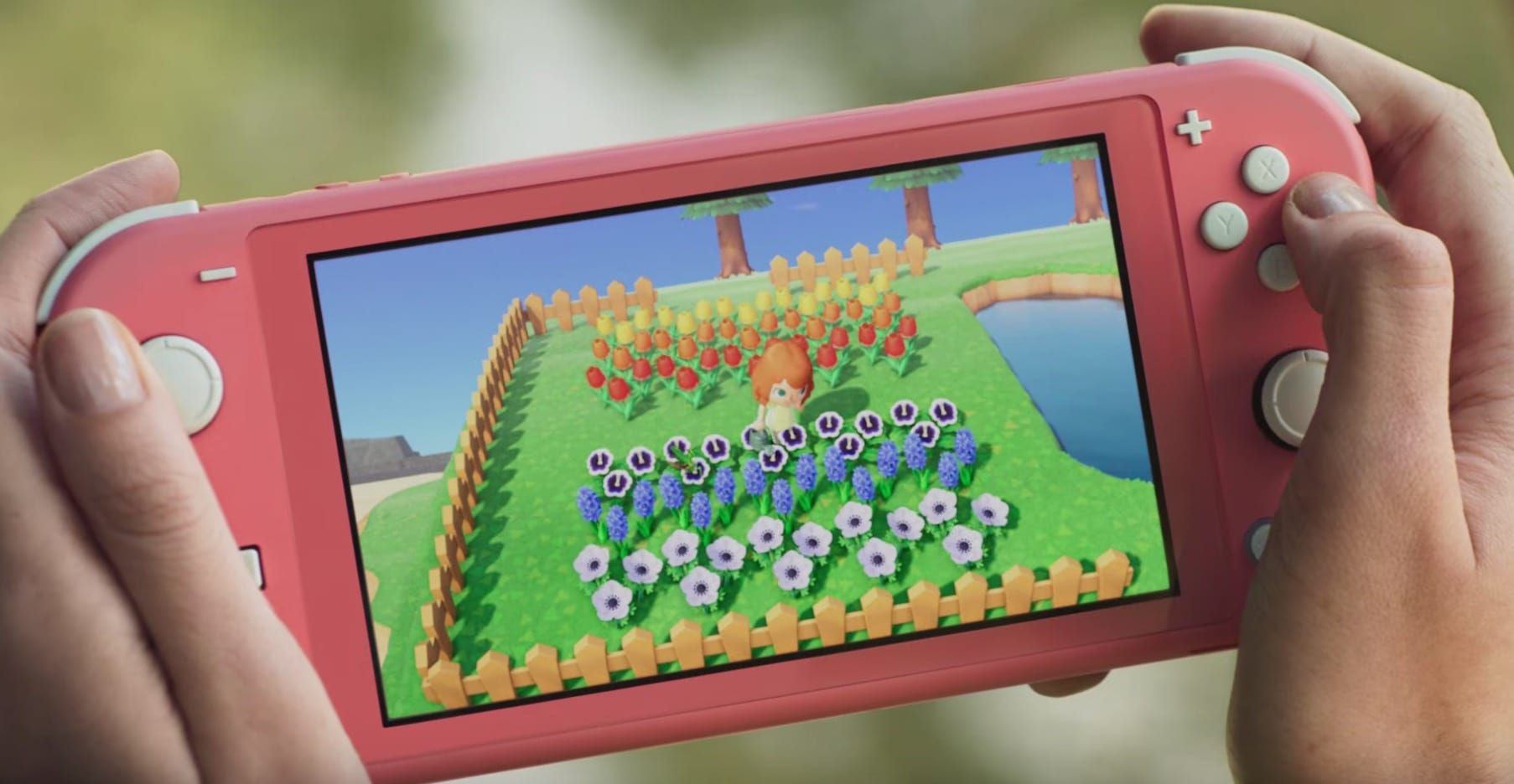 animal crossing new horizons, coral switch lite