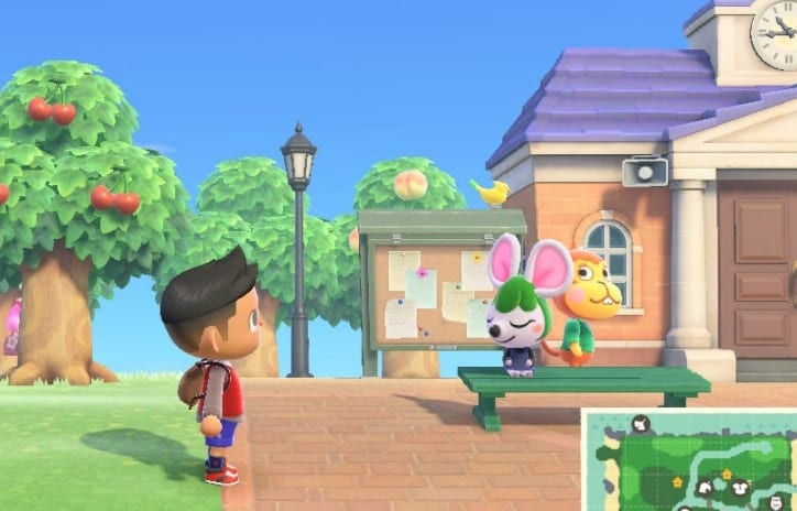 can you catch birds animal crossing new horizons, switch
