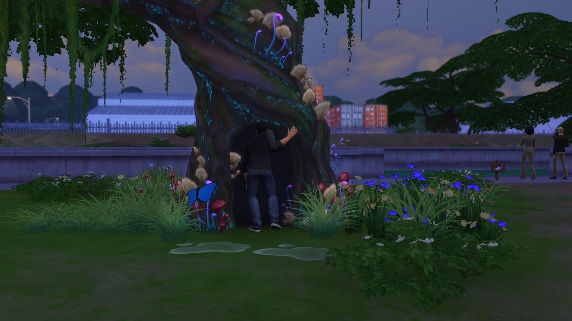симс 4 волшебные бобы, симс 4 волшебное дерево