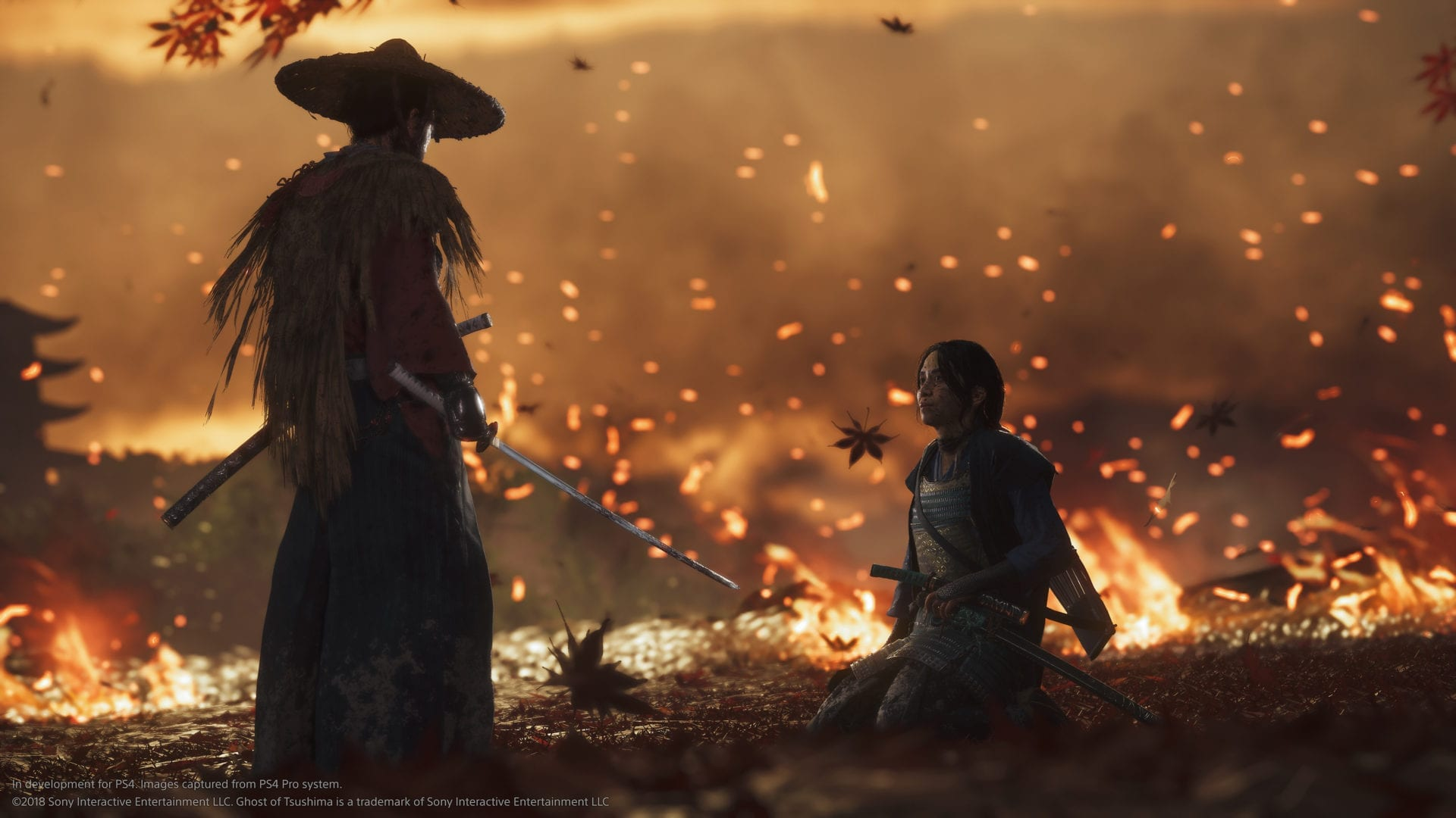 ghost of tsushima, pet a fox