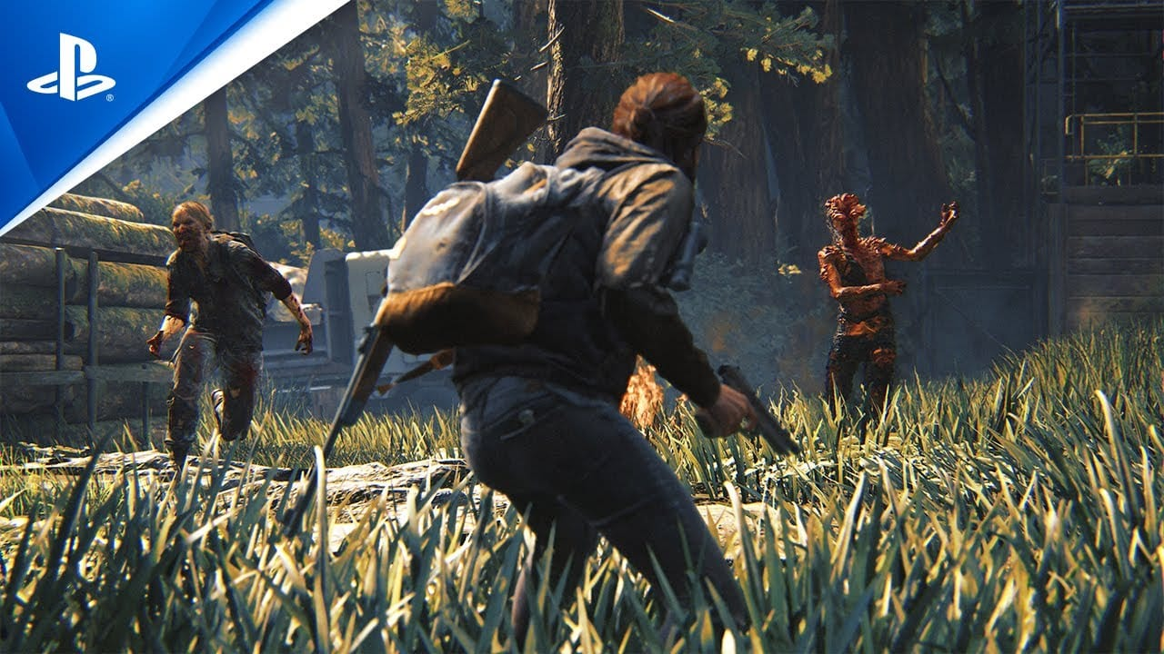the last of us part II, grounded