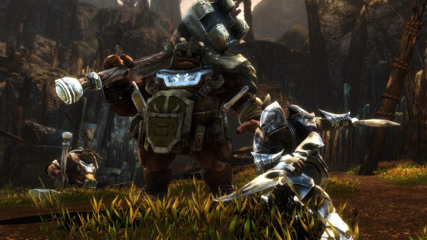 Kingdoms of Amalur stolen items