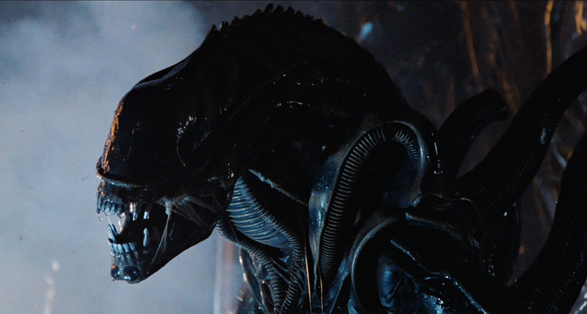 Alien quiz