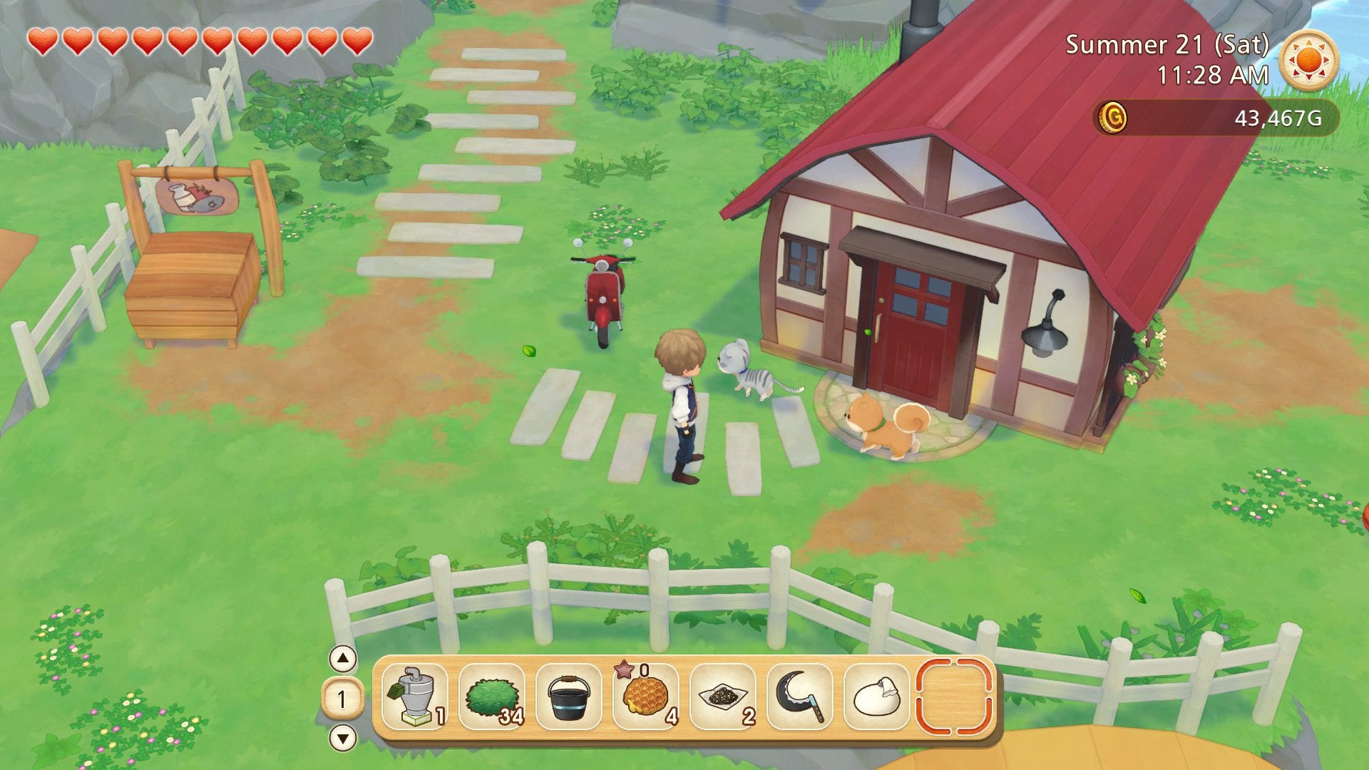 story of seasons pioneers of olive town town medals