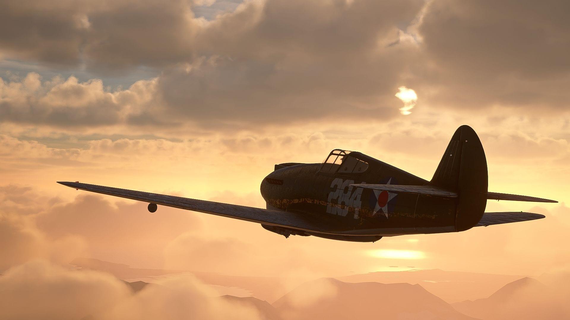 Microsoft Flight Simulator P40