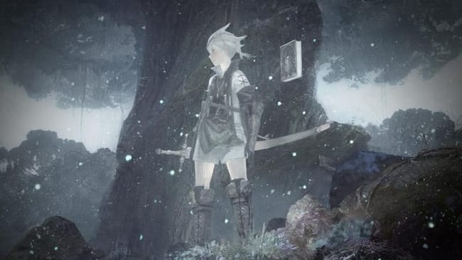 Nier Replicant What to Do With Mermaid Tear