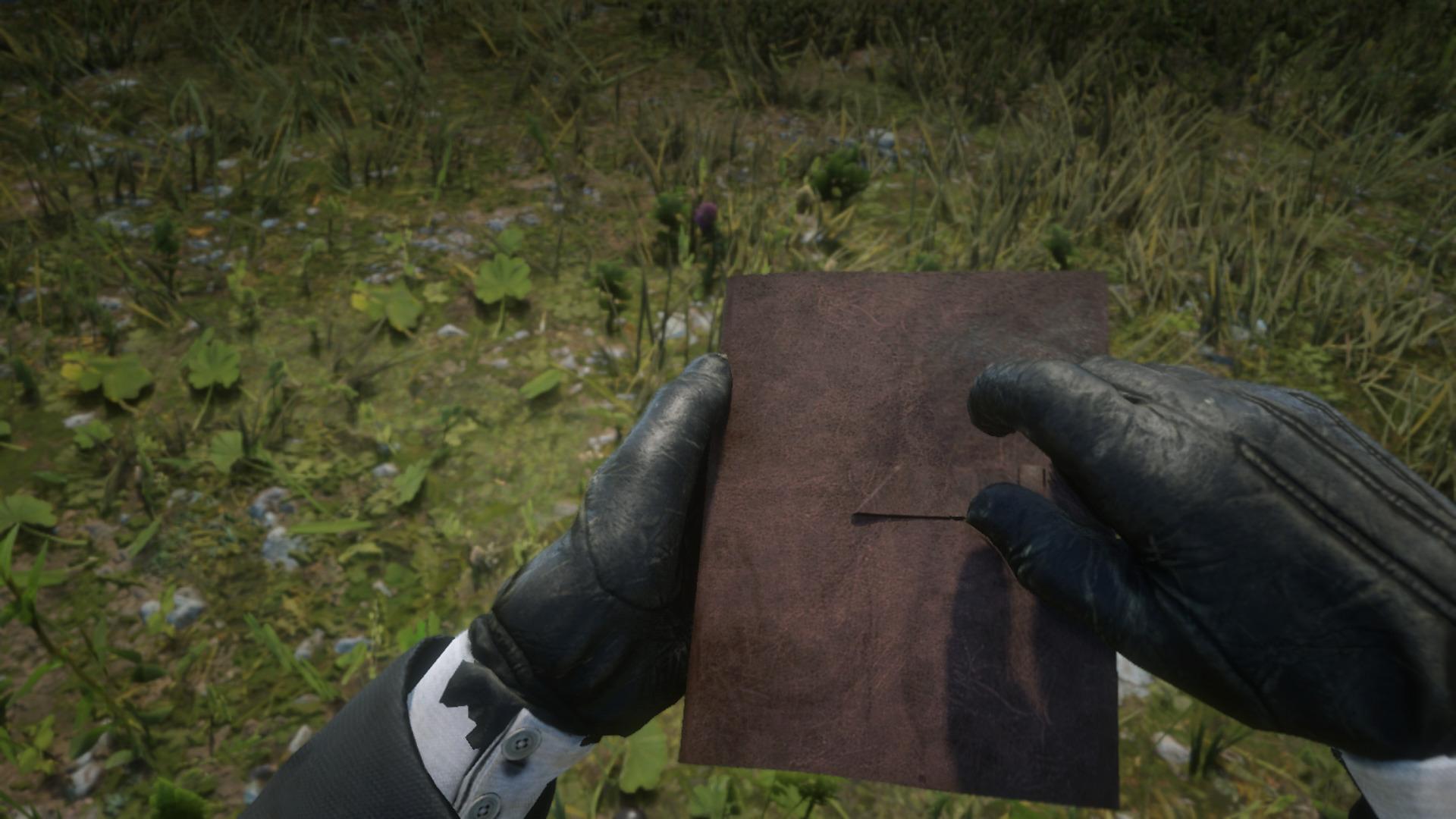 Arthur Morgan's Journal, Red Dead Redemption 2