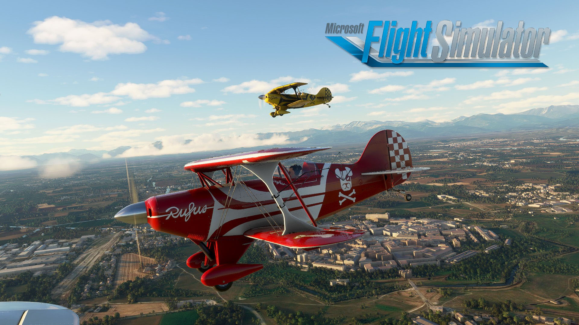 Micfrosoft Flight Simulator