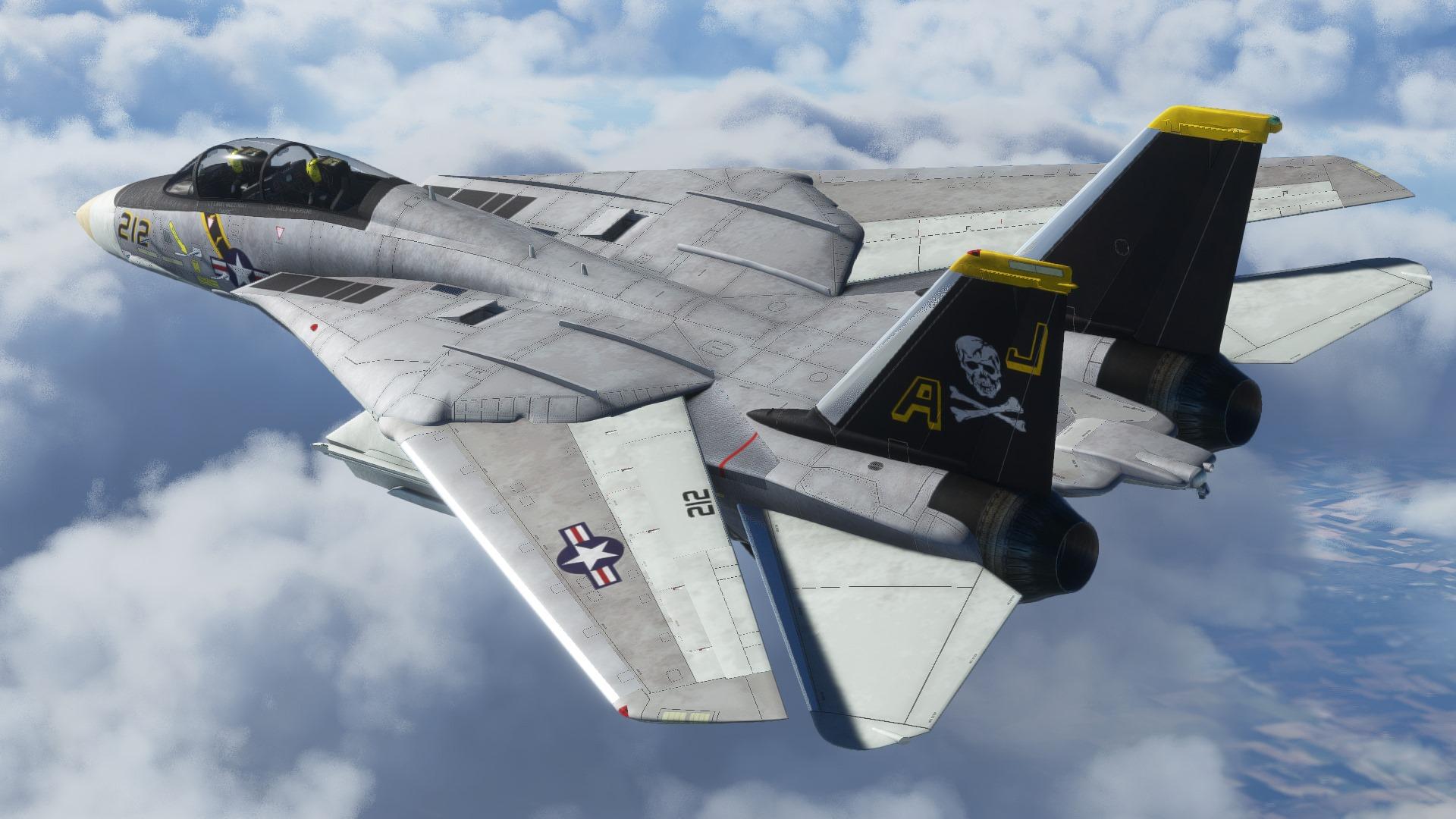 Microsoft Flight Simulator F-14