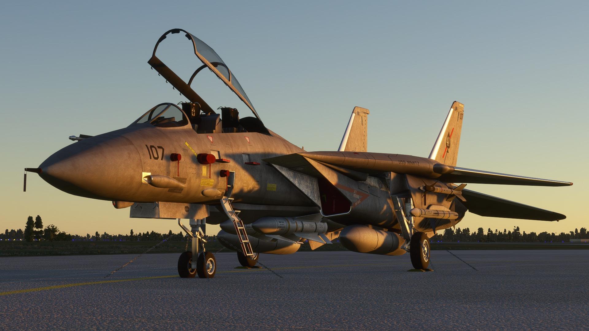 Microsoft Flight Simulator F-14 Tomcat