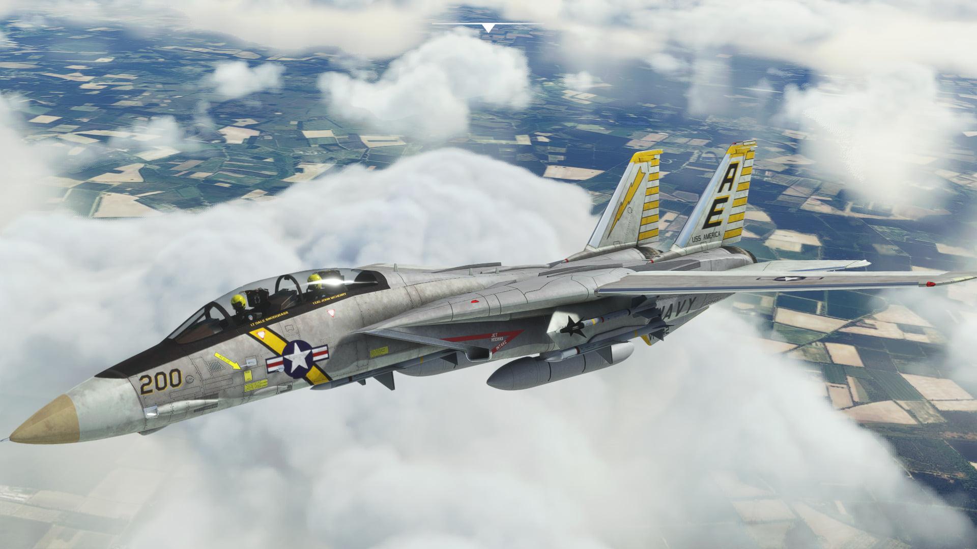 Microsoft Flight Simulator F14