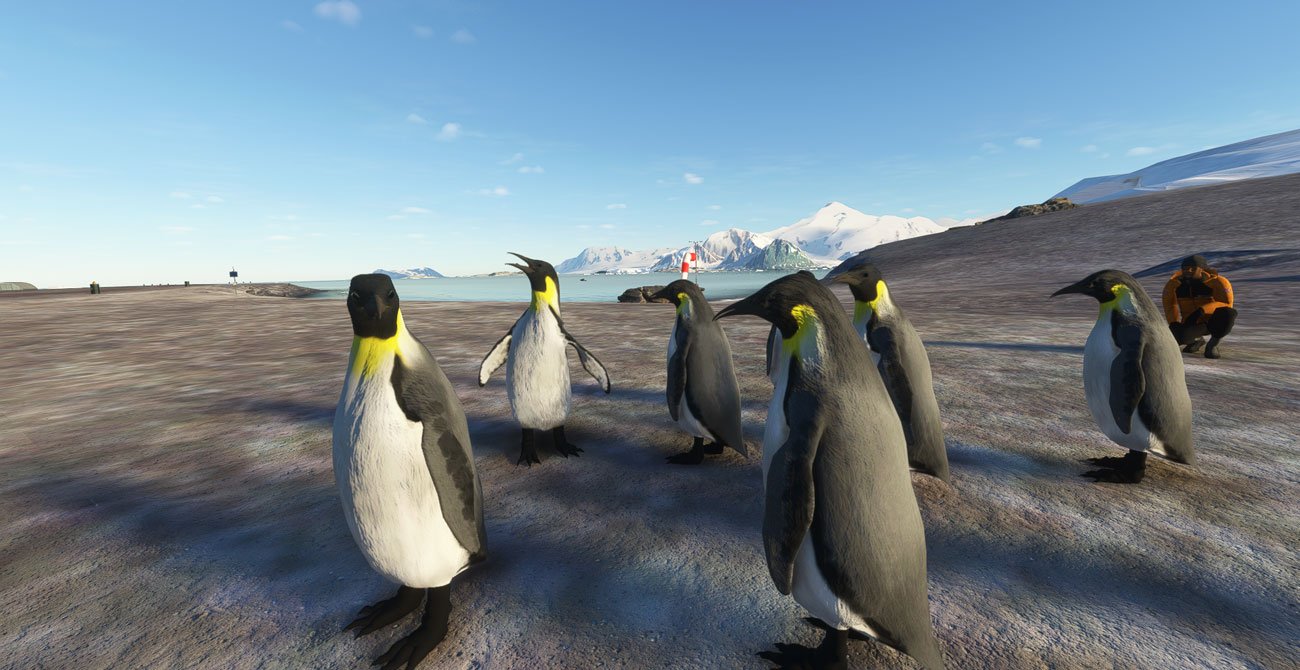 Microsoft Flight Simulator Antarctica